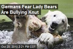 Germans Fear Lady Bears Are Bullying Knut
