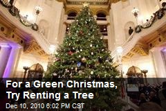For a Green Christmas, Try Renting a Tree