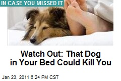Watch Out: That Dog in Your Bed Could Kill You