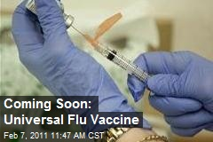 Coming Soon: Universal Flu Vaccine