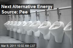 Scientist: Pee Could Run a Car