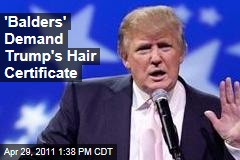Move Over, Birthers: Let&#39;s See Trump&#39;s Hair Certificate