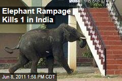 Mysore, India Wild Elephant Attack Leaves One Dead, Others Injured