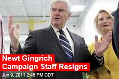 Newt Gingrich&#39;s Top Campaign Staff Resigns