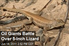 Oil Giants Battle Over 5-Inch Lizard