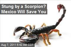 FDA Approves Mexican Scorpion Anti-Venom