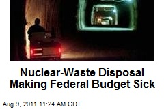 Nuclear Waste Making Federal Budget Sick