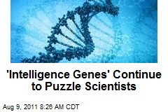 'Intelligence Genes' Continue to Puzzle Scientists