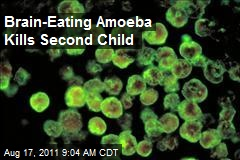 Brain-Eating Amoeba Kills Second Child
