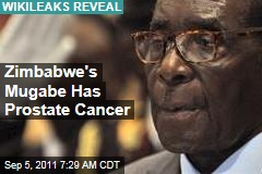 Zimbabwe's Mugabe Has Prostate Cancer