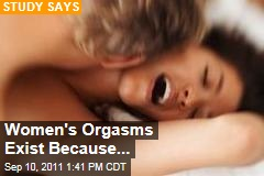 orgasm – News Stories About orgasm - Page 1 | Newser