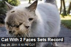 Cat With 2 Faces Sets Record