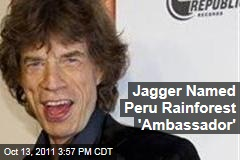 Rolling Stone Mick Jagger Dubbed Peru Rainforest &#39;Ambassador&#39;