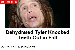 Aerosmith Singer Steven Tyler Rushed to Hospital After Shower Fall