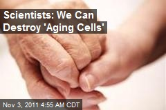 Scientists: We Can Destroy 'Aging Cells'