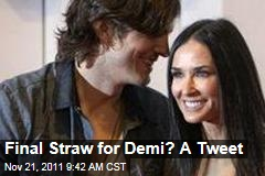 Demi Moore-Ashton Kutcher Divorce: Final Straw for Demi Was Twitter, Not Cheating