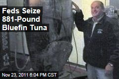 Feds Confiscate Fisherman&#39;s 881-Pound Bluefin Tuna
