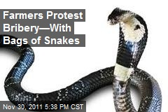 Farmers Protest Bribery&amp;mdash;With Bags of Snakes