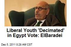 Mohamed ElBaradei: Liberal Youth Protesters 'Decimated' in Egypt Election