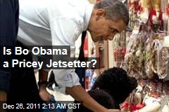 Is Bo Obama a Pricey Jetsetter?