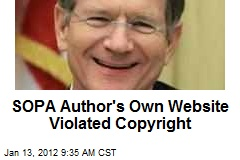 SOPA Author&amp;#39;s Own Website Violated Copyright