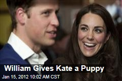 Prince William Gives Kate a Black Lab Puppy
