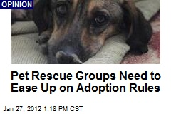 Pet Rescue Groups Need to Ease Up on Adoption Rules