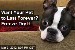 Want Your Pet to Last Forever? Freeze-Dry It
