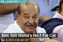 Slim Still World's No.1 Fat Cat