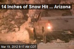 14 Inches of Snow Hit ... Arizona