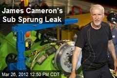 James Cameron's Sub Sprung Leak