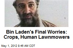 Bin Laden's Final Worries: Crops, Human Lawnmowers