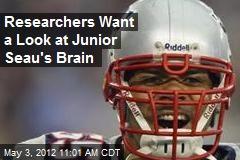 Researchers Want a Look at Junior Seau's Brain