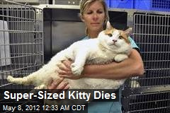 Super-Sized Kitty Dies