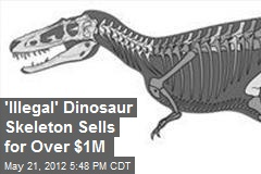 &amp;#39;Illegal&amp;#39; Dinosaur Skeleton Sells for Over $1M