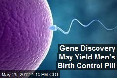 Gene Discovery May Yield Men's Birth Control Pill