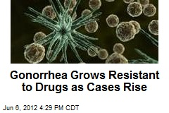 Gonorrhea Grows Resistant to Drugs as Cases Rise
