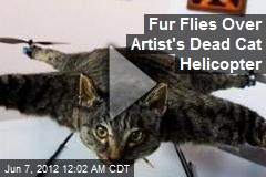 Fur Flies Over Artist's Dead Cat Helicopter