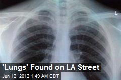 'Lungs' Found on Los Angeles Street
