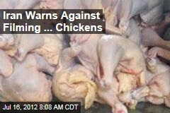 Iran Warns Against Filming ... Chickens