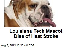 Louisiana Tech Mascot Dies of Heat Stroke