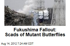 Fukushima Fallout: Scads of Mutant Butterflies
