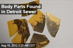 Body Parts Found in Detroit Sewer