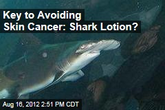 Key to Skin Cancer Cure: Shark Lotion?
