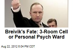 Breivik&amp;#39;s Fate: 3-Room Cell or Personal Psych Ward