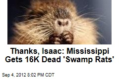 Thanks, Isaac: Mississippi Gets 16K Dead &amp;#39;Swamp Rats&amp;#39;