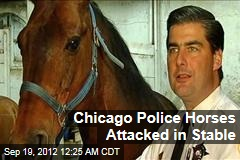 Chicago Police Horses Attacked in Stable