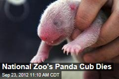 National Zoo's Panda Cub Dies
