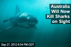 Australia Will Now Kill Sharks on Sight