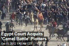 Egypt Court Acquits &amp;#39;Camel Battle&amp;#39; Plotters
